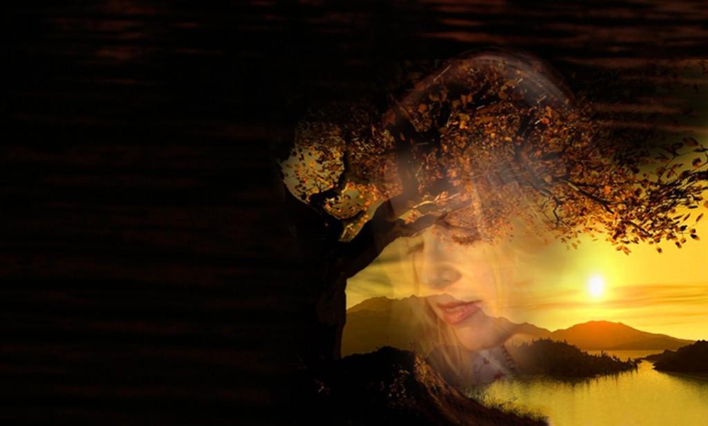 Golden tree Montage web
